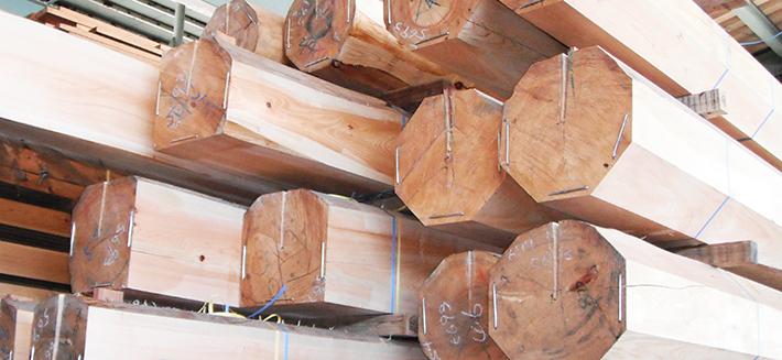 宮大工が語る社寺建築の価格の決め手「木材」の知識